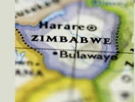 Zimbabwe minister arrested over COVID-19 supplies scandal