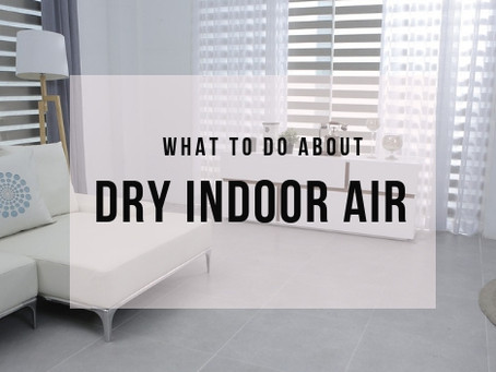 Dry Indoor Air And What You Can Do About It