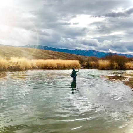 Is there a day of the week that is worse for catching trout?