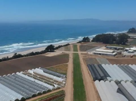 Monterey Bay Academy Airfield (CA66)