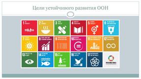 Подготовка добровольного национального обзора достижения целей устойчивого развития