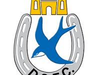 Dungannon 0 - Ards 0