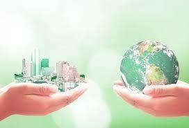 Non-Profit Entrepreneurships: Business + Humanities