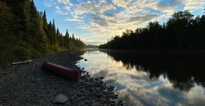 Five Days on the West Branch