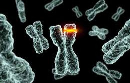 THIS SUMMER - IMPROVE YOUR HEALTH BY HEALING GENETIC MUTATIONS