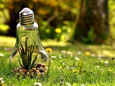 Saving the Environment at Home