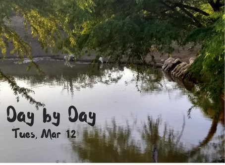 Day by Day: Tues, Mar 12