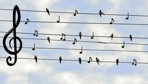 Learn about the musical alphabet, dynamics, and more