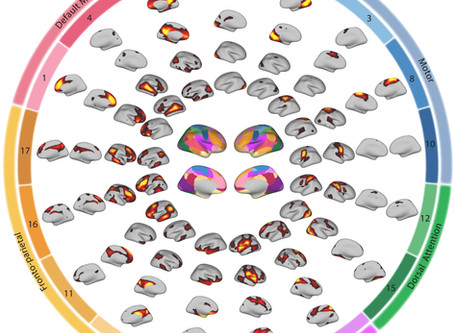 Personalized Brain Networks in Youth