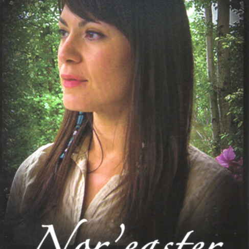 My First Published Book — Nor'easter