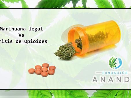 Marihuana Legal Vs la Crisis de Opioides