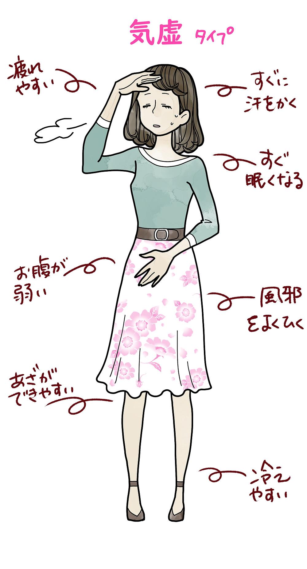 解説イラスト 中医学 薬膳 気虚 女性