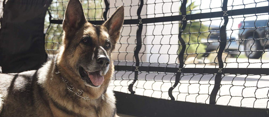 The K9 Garage Door Kennel Net Creates a Safe and Comfortable Outdoor Space for Your Dog