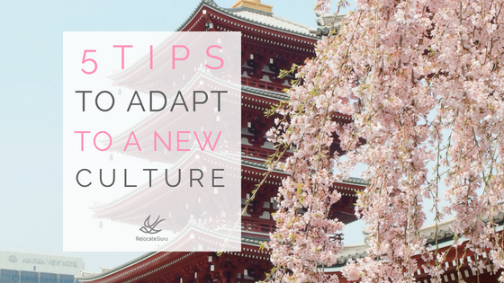 5 Tips to adapt to your new culture