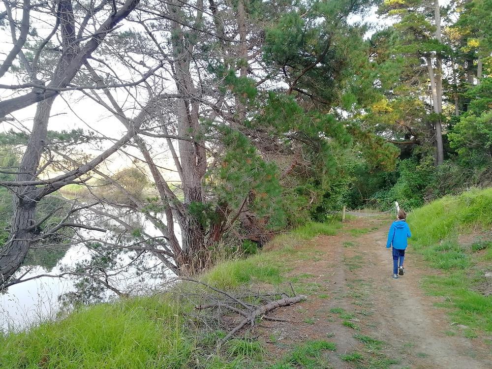 Tour du monde à vélo en famille Australie koalas