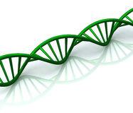 Se puede abrir el ADN ?