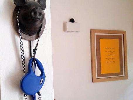 Pig Head Hanger