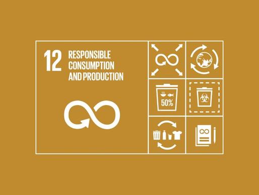 El Turismo Sostenible & el ODS 12