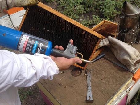 El soplete de plomero; buen aliado en la apicultura.
