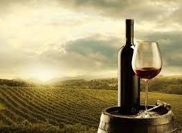 История на виното