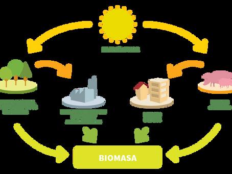 La generación de energías renovables con más peso en la U. E. es la biomasa