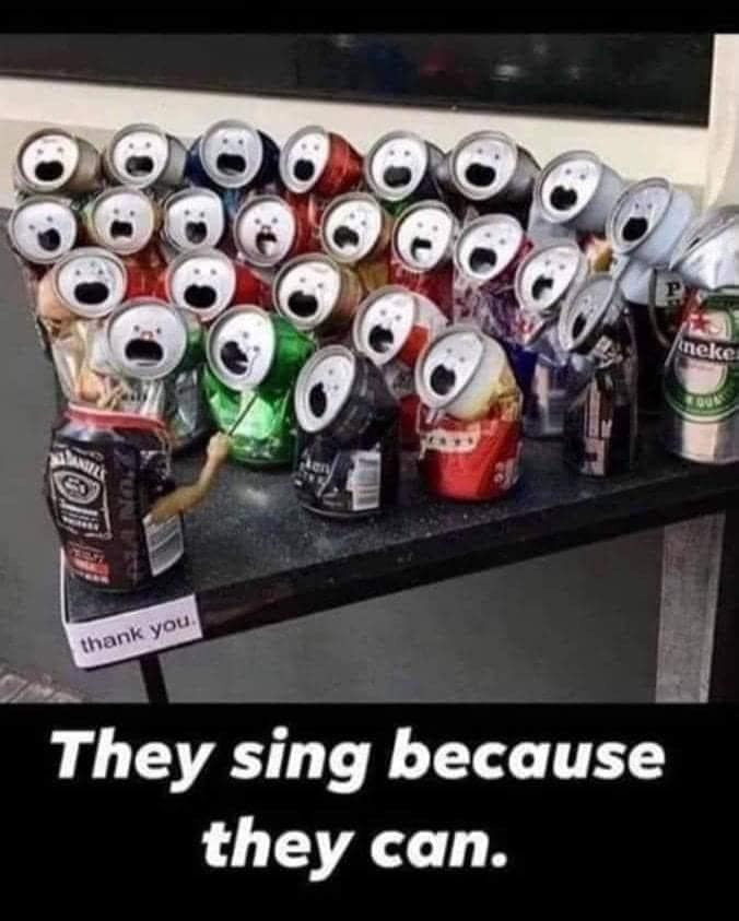 They sing because they can Meme