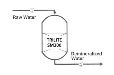 TRILITE SM300 / Process