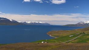 Kreuzfahrt TUI Cruises: Island mit Schottland mit der MS 3