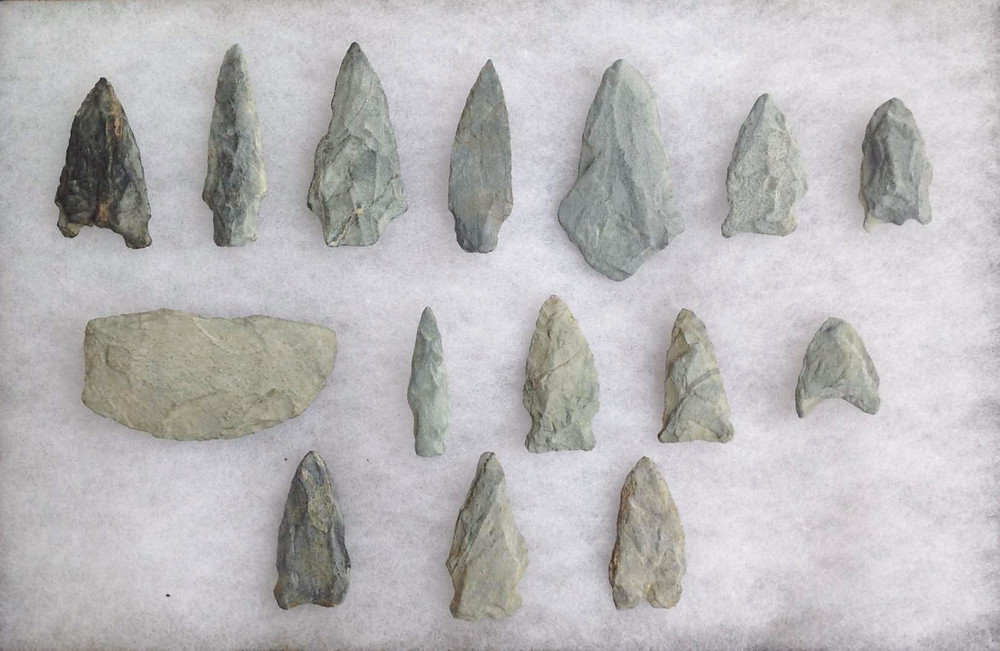Arrowheads found in New England, made from Argillite.