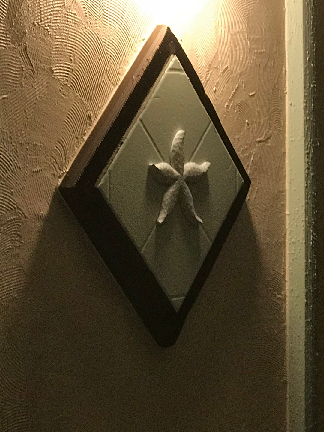 photo of one of several decorative starfish on diamond shaped tile on exterior of the courtyard