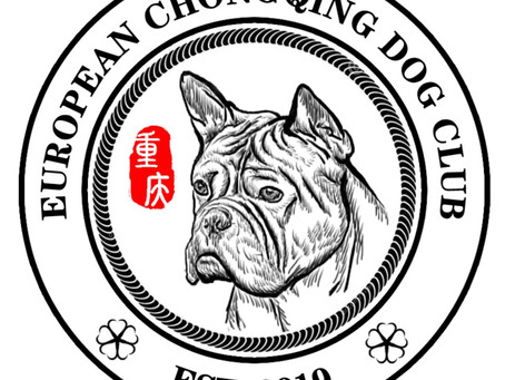 The Chongqing Dog and Chuandong Hound Specialty Show