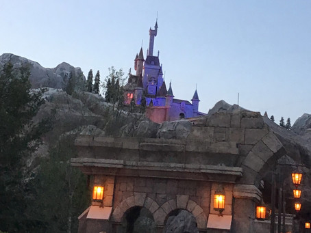 Where can you get an up-close view of The Beast from Beauty and The Beast?
