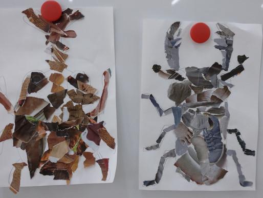 カブトムシ vs クワガタ