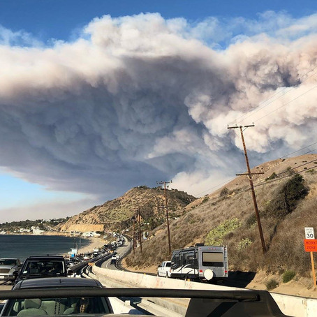 California Enacts Laws Targeting Property and Other Wildfire Cost Mitigation