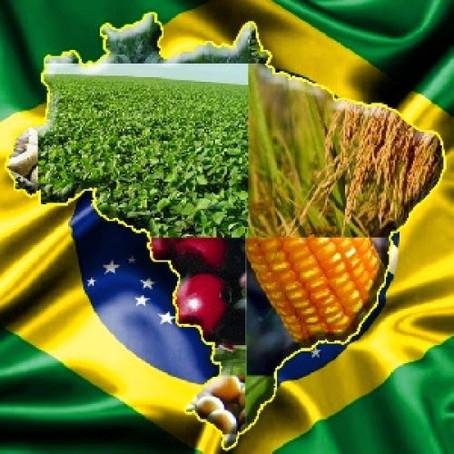 Agro Global 3: Diferenciação e Imagem