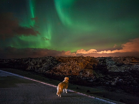 Meditate in Iceland