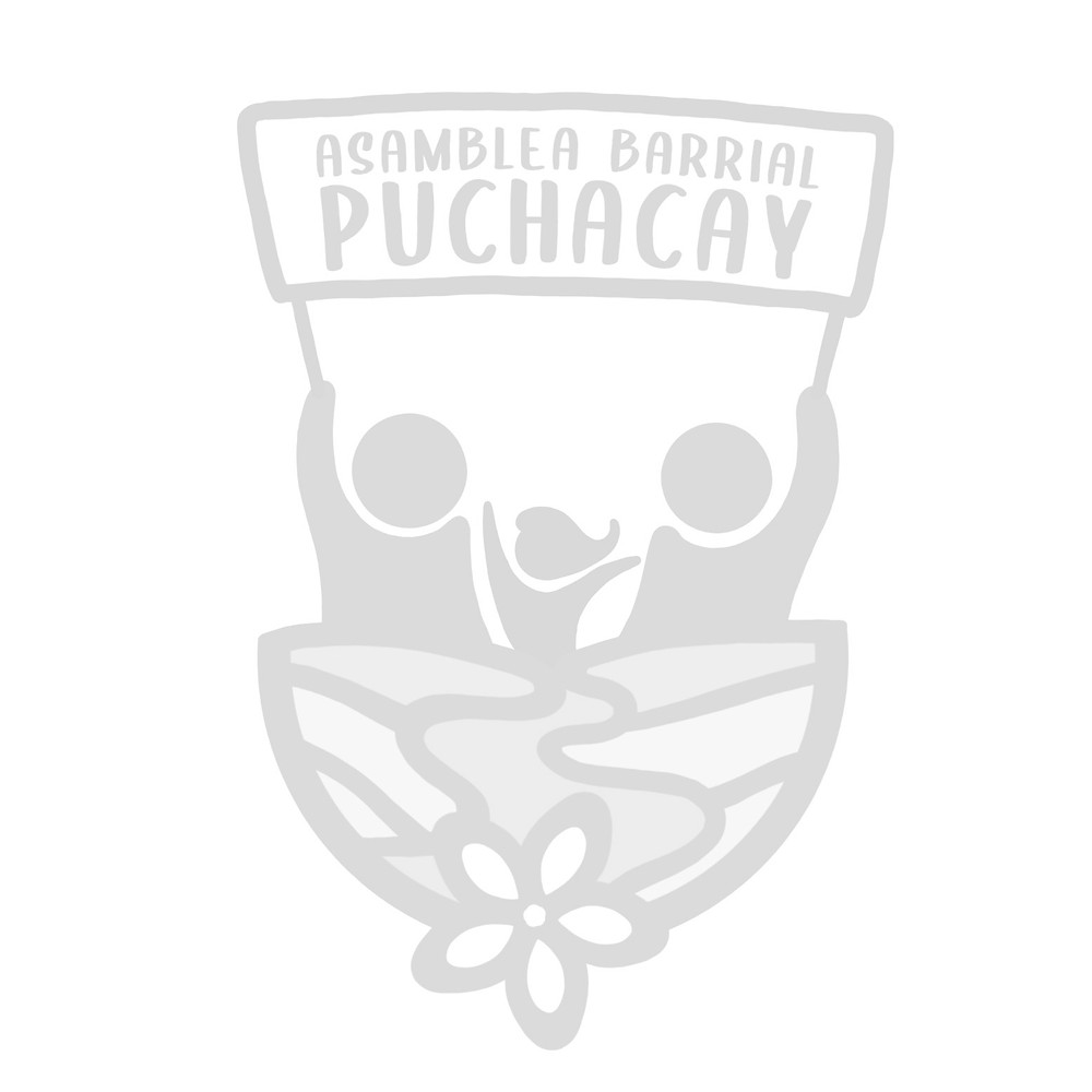 Asamblea Barrial Puchacay