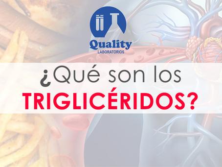 ¿Qué son los triglicéridos?