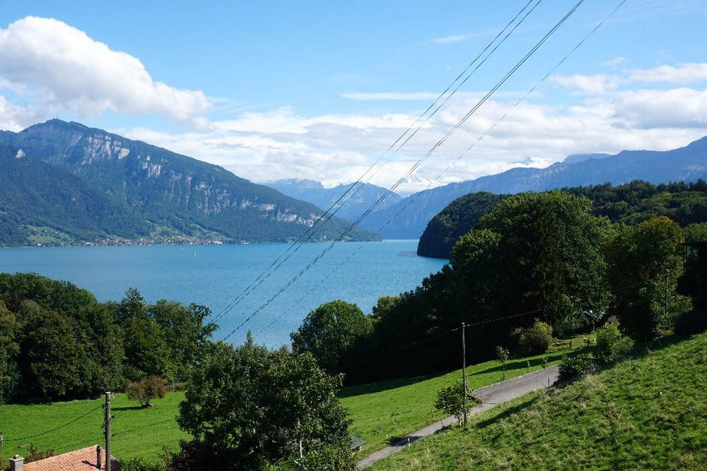 אגם תון, שווייץ