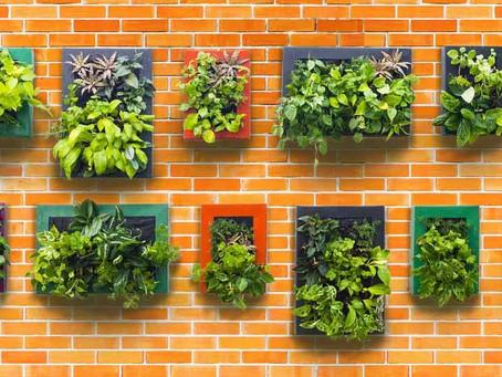 ¿Qué es la Horticultura?