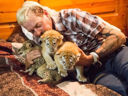 """Animal Spirits   L'epos antifrastico di """"Tiger King"""""""