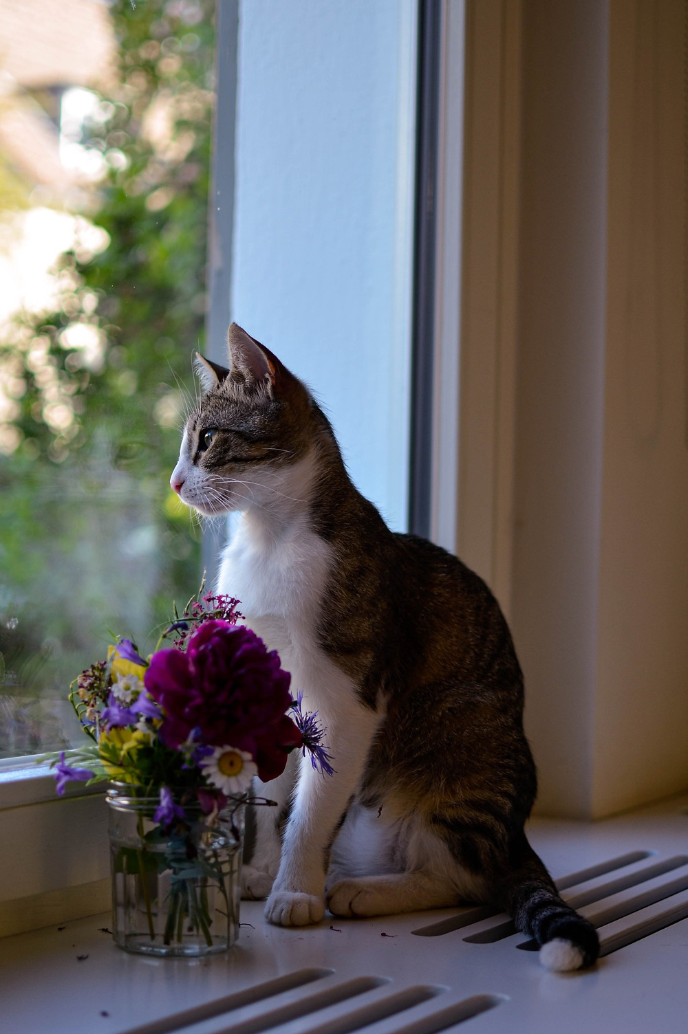 Cat looking out the window next to a bouquet of flowers.