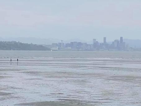 Low Tide Bainbridge Island View of Seattle