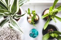 Grow Your Blog Community