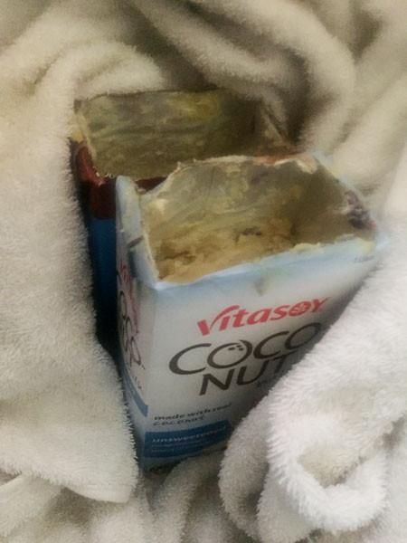 Using empty coconut milk cartons as molds.