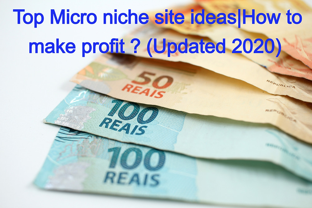 Micro niche finder site ideas|How to make profit ? (Updated 2020)