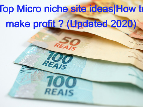 Top Micro niche sites examples|How to make profit ? (Updated 2020)