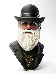 Busto di Charles darwin scale 1/10 laterale Luca Vergerio painter