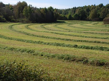 Smidigare lantbruk med skörderoboten Fieldgofer