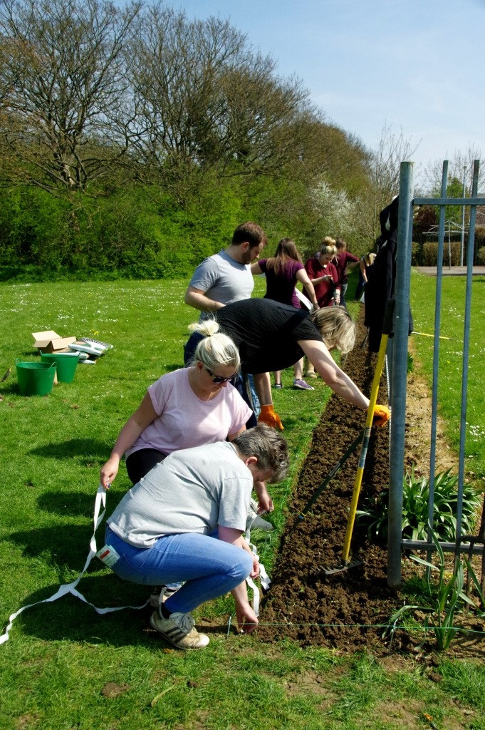 Volunteers from Thomson Holidays put the final touches to the Wildflower Border - April 2015